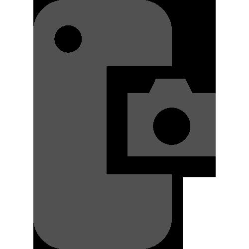Google Pixel 1 Rear Camera Repair